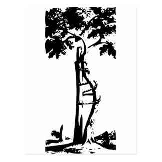 Orthopedic Crooked Tree Postcard