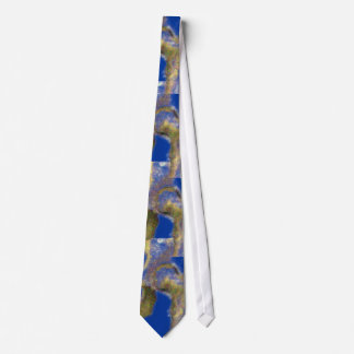 Orthopedic Physician Surgeon Hip Joint Necktie