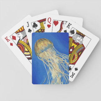 Ortiga septentrional del mar barajas de cartas