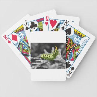 oruga del perejil blanco y negro barajas de cartas