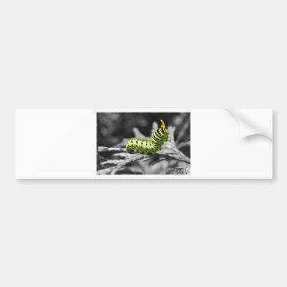 oruga del perejil blanco y negro pegatina de parachoque
