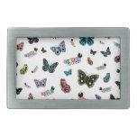 Orugas y mariposas lindas del dibujo animado hebillas de cinturón rectangulares