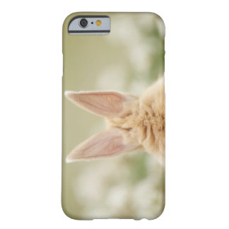 Oryctolagus cuniculus 2 barely there iPhone 6 case