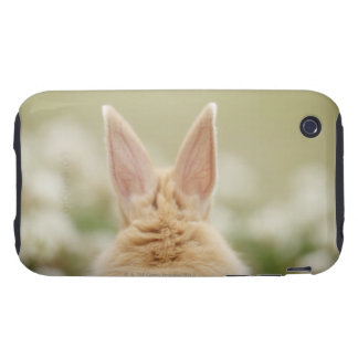 Oryctolagus cuniculus 2 iPhone 3 tough covers