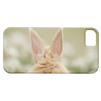 Oryctolagus cuniculus 2 iPhone SE/5/5s case