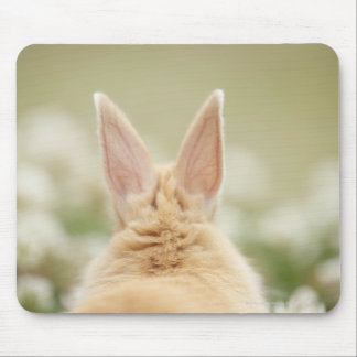 Oryctolagus cuniculus 2 mouse pad