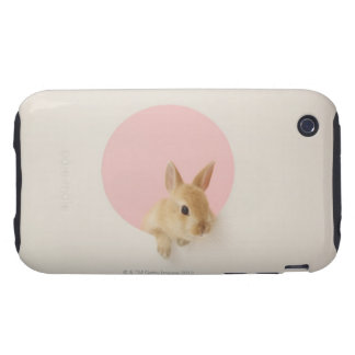 Oryctolagus cuniculus 3 tough iPhone 3 cases