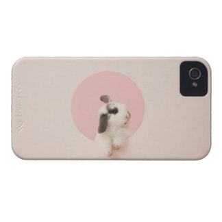 Oryctolagus cuniculus Case-Mate iPhone 4 cases