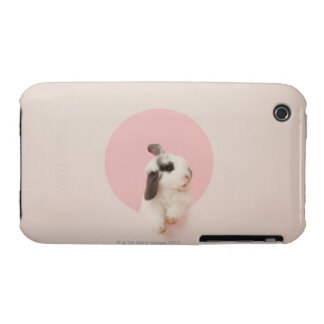 Oryctolagus cuniculus iPhone 3 cover