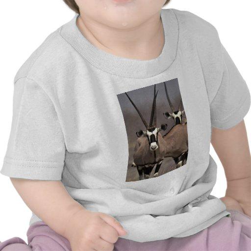 Oryx antelope shirts