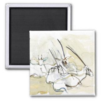 Oryx árabe 2010 2 imán cuadrado