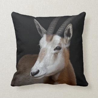 Oryx Pillow