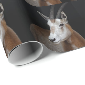 Oryx Wrapping Paper