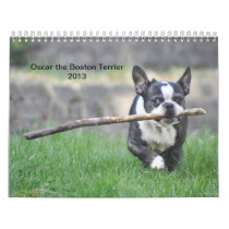 Oscar the Boston Terrier 2013 calender Calendar