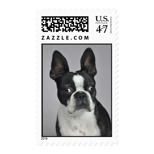 Oscar the Boston Terrier Stamps