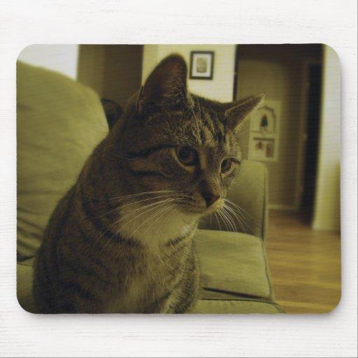 Oscar the Cat Mousepad