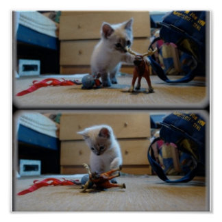 """Oscar """"The Cat"""" Petroni vs. The Moose Poster"""