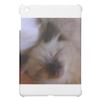 Oscar The Kitten iPad Mini Cases