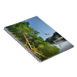 Oscilación de la cuerda del lago ladybird - Austin Cuadernos