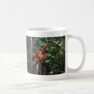 Oscilaciones del orangután tazas de café