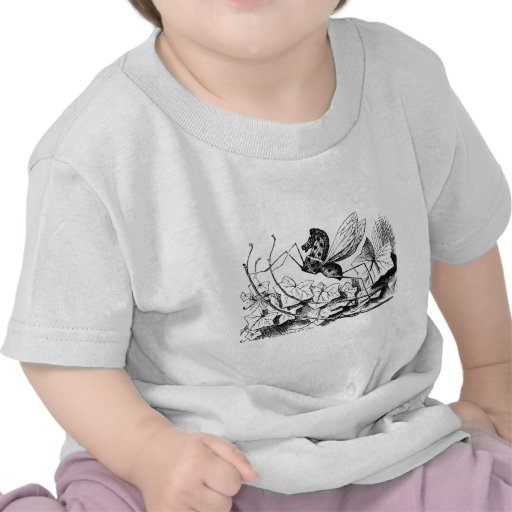 Oscilar-caballo-mosca Camisetas