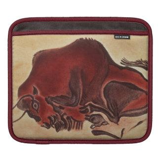 Oscile la pintura de un bisonte, último Magdalenia Manga De iPad