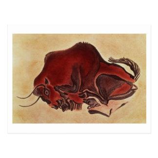 Oscile la pintura de un bisonte, último postales