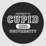 Oscuridad de la universidad del Cupid Pegatina Redonda