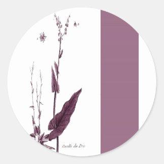Oseille des Prés Classic Round Sticker