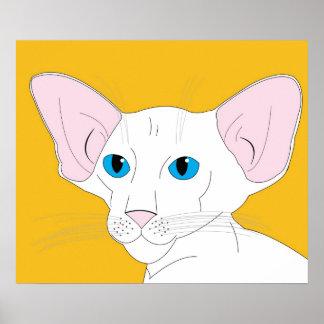 OSH Kitten, White Poster