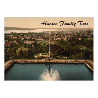 Oslo from St Hanshaugen Park, Norway Large Business Cards (Pack Of 100)
