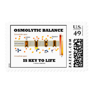 Osmolytic Balance Is Key To Life Active Transport Stamp