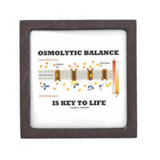 Osmolytic Balance Is Key To Life (Na-K Pump) Jewelry Box