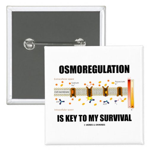Osmoregulation Is Key To My Survival Pinback Button