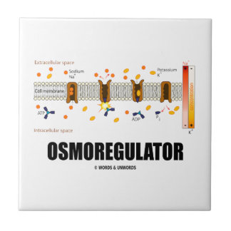Osmoregulator (Sodium-Potassium Pump) Ceramic Tile