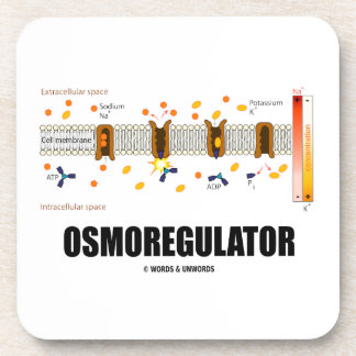 Osmoregulator (Sodium-Potassium Pump) Coaster