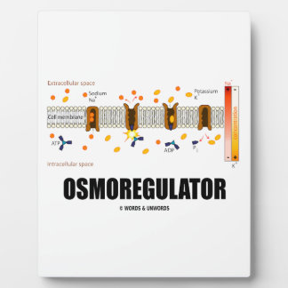Osmoregulator (Sodium-Potassium Pump) Plaque