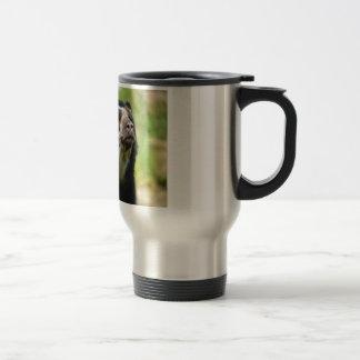 Oso andino del retrato taza