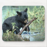 Oso-cachorro negro en pantano del verano tapetes de ratón