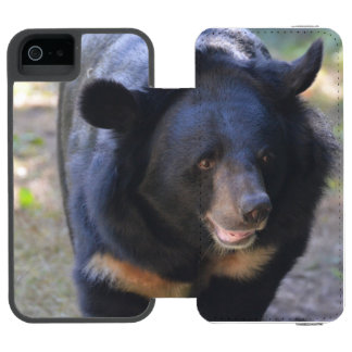 Oso con gafas negro funda billetera para iPhone 5 watson