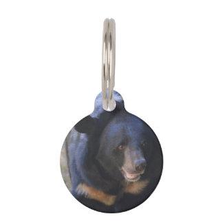 Oso con gafas negro placa para mascotas