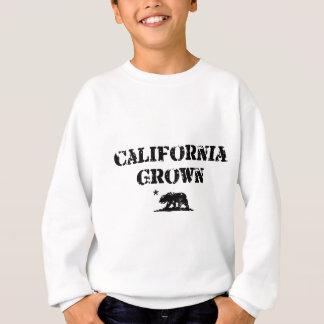 Oso crecido California Sudadera