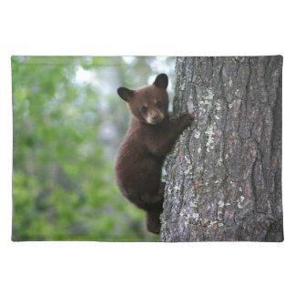Oso Cub que sube un árbol Manteles
