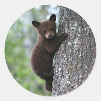 Oso Cub que sube un árbol Pegatina Redonda