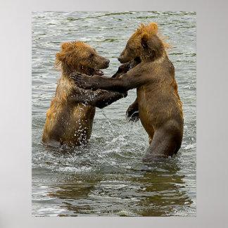 Oso Cubs de Brown Poster