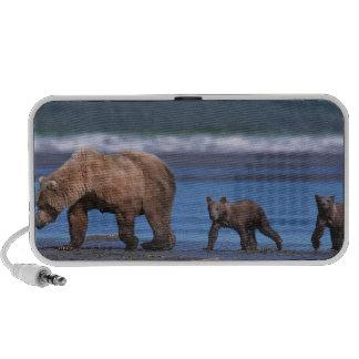 Oso de Brown, arctos del Ursus, península de Alask Laptop Altavoz