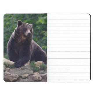 Oso de Brown Cuadernos Grapados