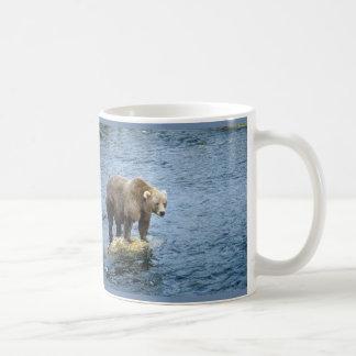 Oso de Brown del americano en agua Tazas De Café