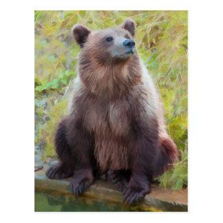 Oso de Brown del europeo en parque del oso de Bern Tarjetas Postales