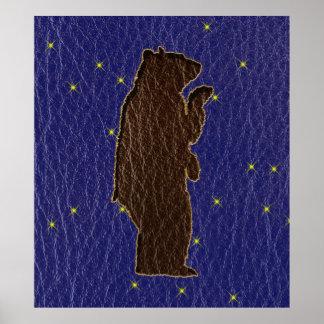 Oso de Brown del zodiaco del nativo americano de Póster
